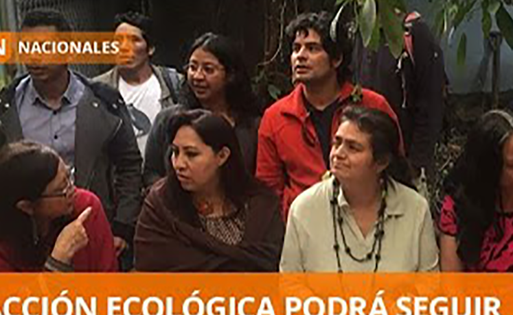 a screenshot of a news piece about Acción Ecológica's victory featuring 8 people from the environmental group standing together